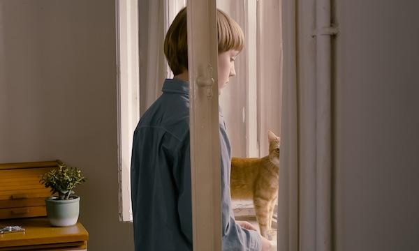 Strange_little_cat_02