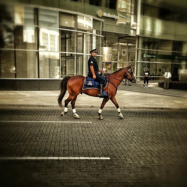Detroiti Mounted PD