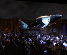 Intel demonstrates a real-time 3D whale at CES