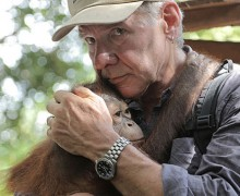 Harrison Ford holds a young ape during his segment of Showtime's 'Years of Living Dangerously.' (Photo courtesy of Showtime)
