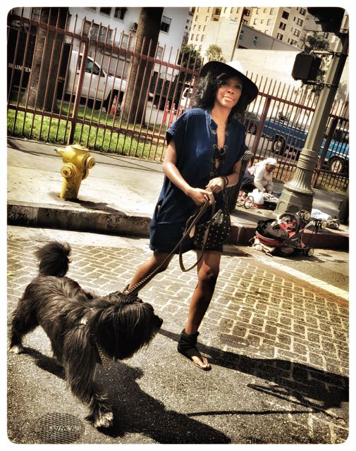 Human Walking Dog
