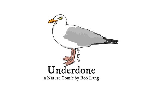 Underdone: A Nature Comic
