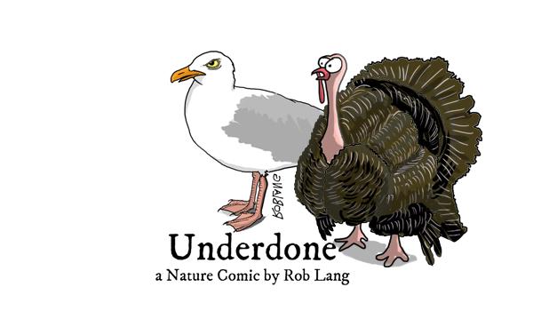 Underdone Turkey Day Header