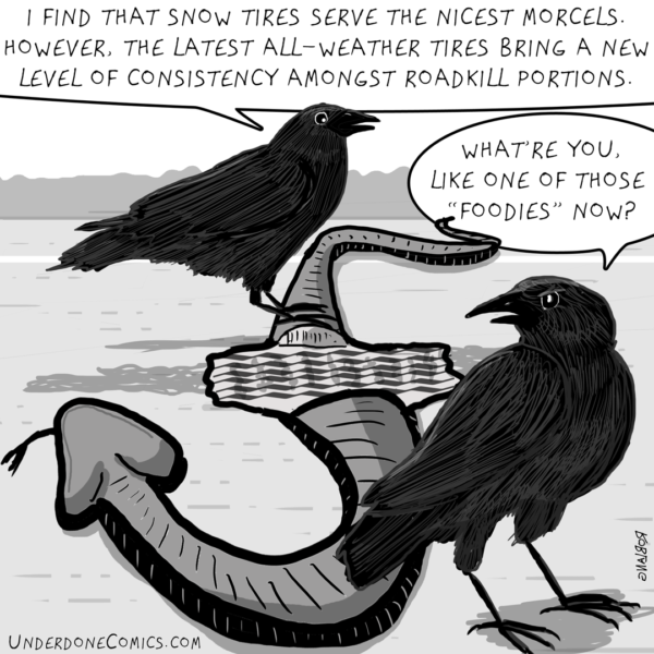 The crow is clearly a connoisseur.