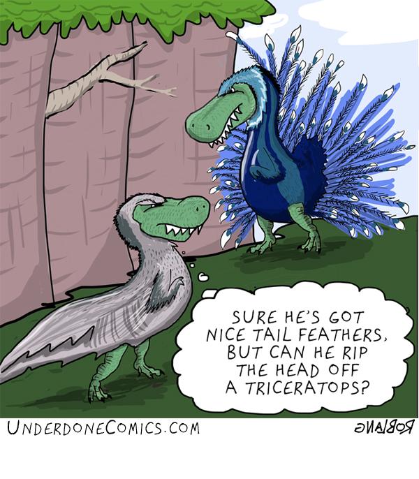 Common Tyrannosaurus Rex courtship behavior
