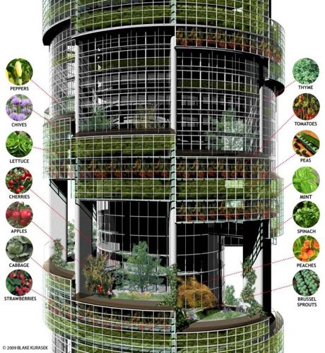 Verical Farming - Rendering: Blake Kurasek