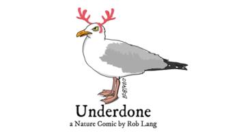 underdone-cw-header-holiday