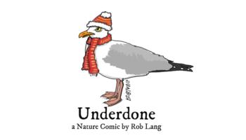 underdone-cw-header-winter