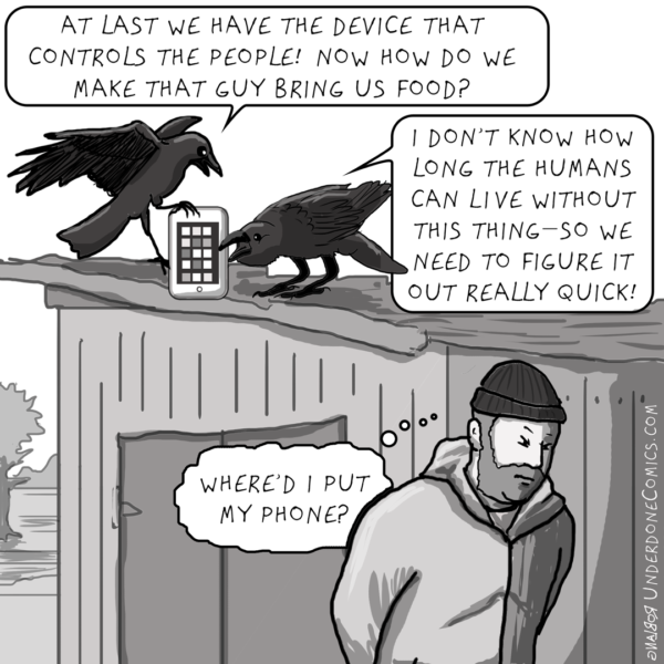 The crows know what's in charge.