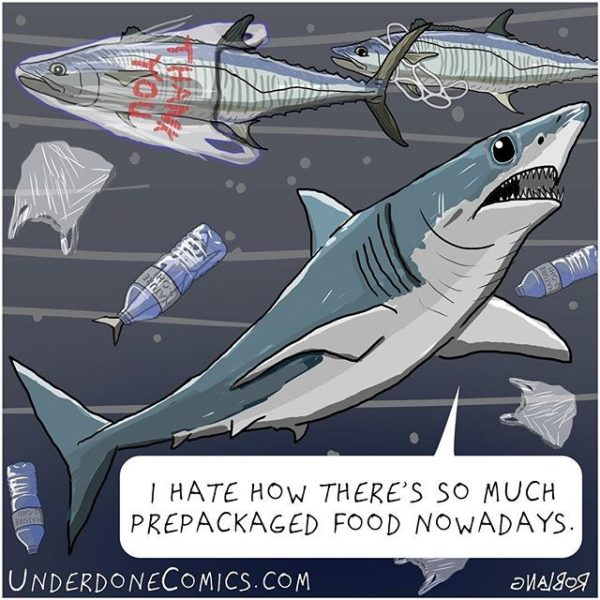 The mako shark is trying to watch what he eats.