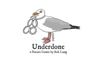 Underdone Plastics