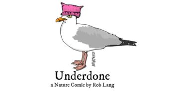 UNDERDONE-CW-header-poonhat