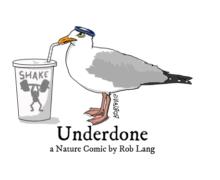 underdone-cw-header-shake