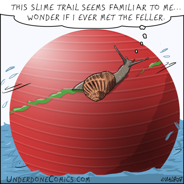What goes around comes around very slowly. Especially when a snail slides around an exercise ball floating in water on a calm day.
