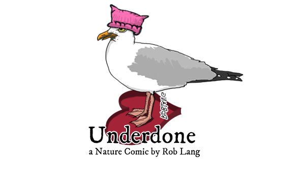 UNDERDONE-CW-header-Valentine-love