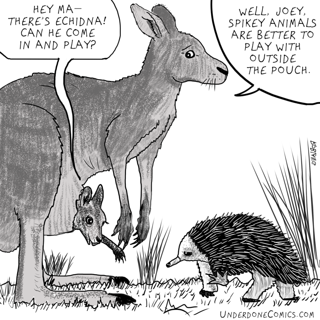 UNDERDONE-echidna-and-joey
