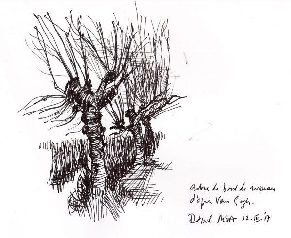 VG arbres - ruisseau