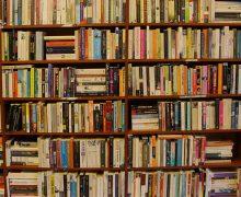 Literature Books Bookshelf Shelf Library Bookcase