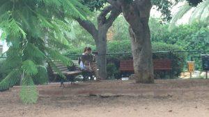 Politis Park, Ramat Aviv, 6:00 AM. Copyright Rick Meghiddo. All Rights Reserved.