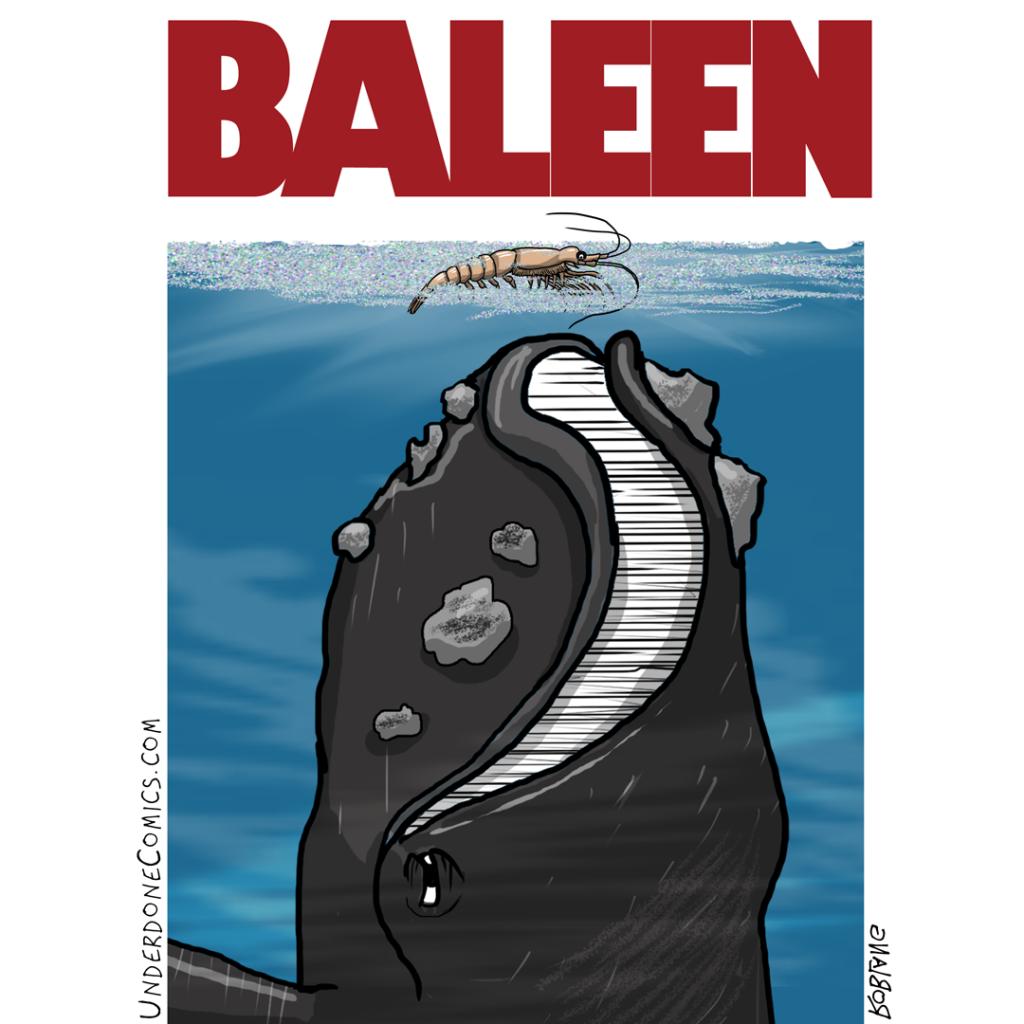 UNDERDONE baleen