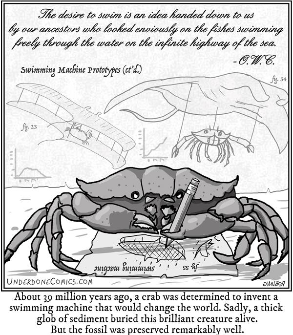 UNDERDONE crab will swim