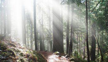 Image Source:  Bureau of Land Management Oregon & Washington