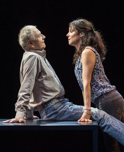 Denis Arndt and Mary-Louise Parker in Heisenberg at The Mark Taper Forum.