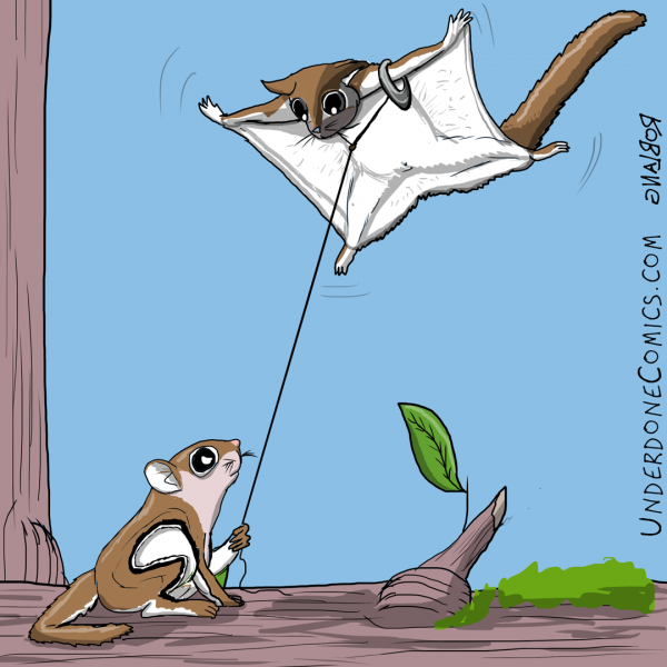 UNDERDONE flying squirrel kite