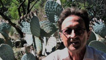 cactus poet (2)
