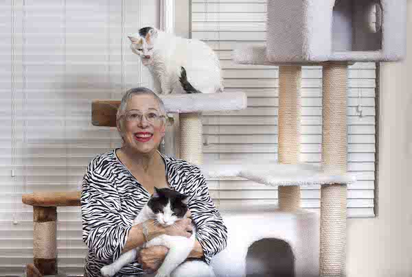 Linda Faden_Cats Oreo and Cookie Dough_Photo by Jim Storm_Cultural Weekly.com