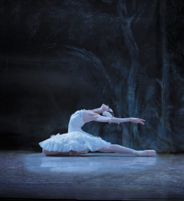 """Los Angeles Ballet's """"Swan Lake"""". Photo by Reed Hutchinson."""