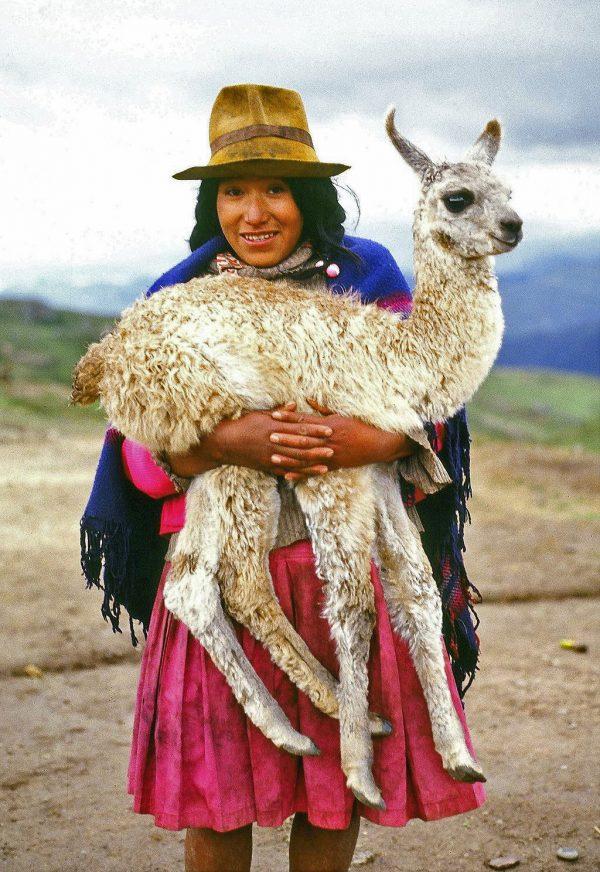 Cuzco, Peru. Llama (c) Elisa Leonelli 1981