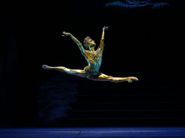 Dancer Joseph Gorak in American Ballet Theater's La Bayadère. Photo by Marty Sohl.