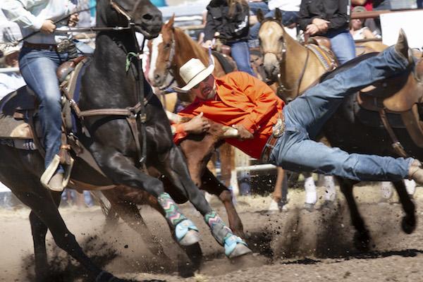 Cowboy; steer wrestling