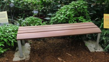 the curved top bench