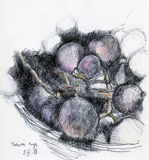 lone grape cluster
