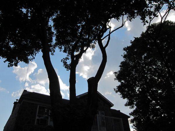 Silvery clouds through an urban profile
