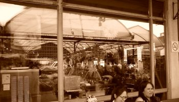 basic environmental ingredients of the public market