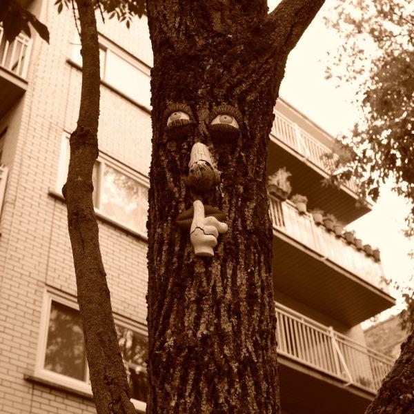 Shhh say says the tree