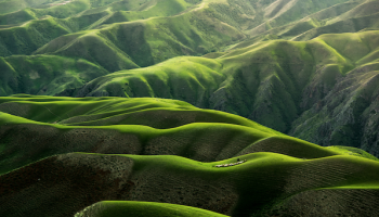 Grassland in China. Photo by Qingbao Meng via Unsplash.