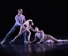 Barak Ballet. Photo by Dave Friedman.